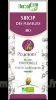 Herbalgem Sirop Bio Des Fumeurs 150ml à Puy-en-Velay