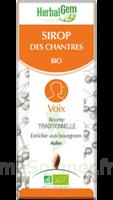 Herbalgem Sirop Bio Des Chantres 150ml à Puy-en-Velay